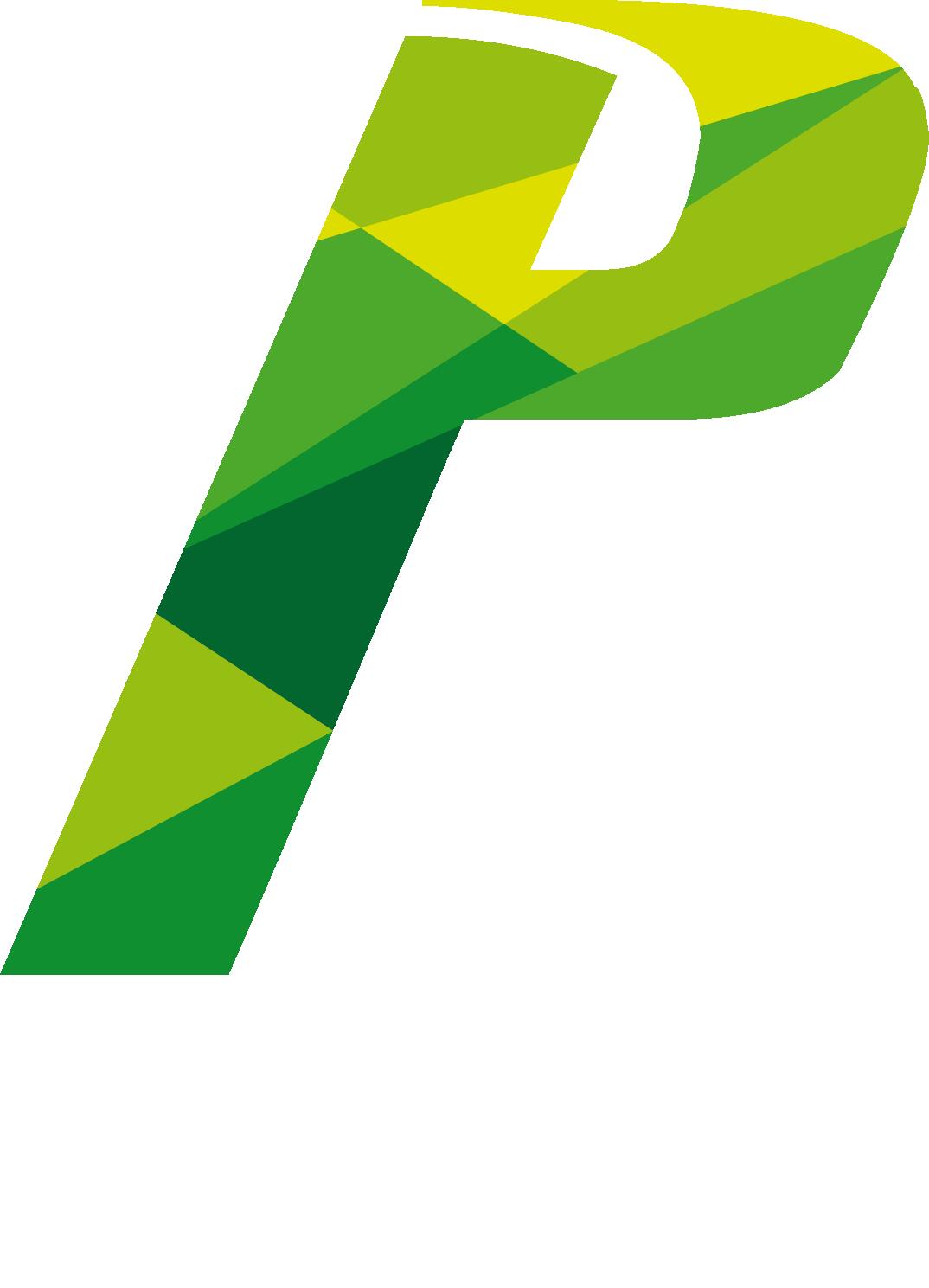 P3 TEAM